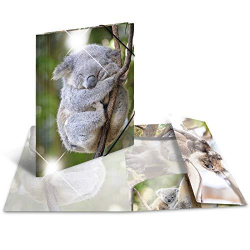 HERMA 19323patinati Sammelmappe DIN A4, in plastica, serie Animali, motivo: Koala, segno Mappe Con con elastici in gomma, con stampa interna, 1pezzi
