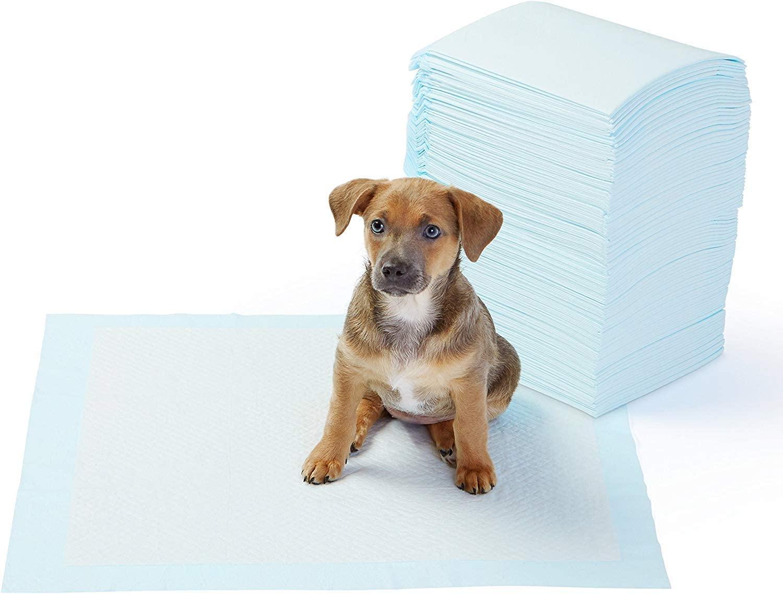 AmazonBasics - Tappetini igienici assorbenti per animali domestici, misura standard, 100 pz