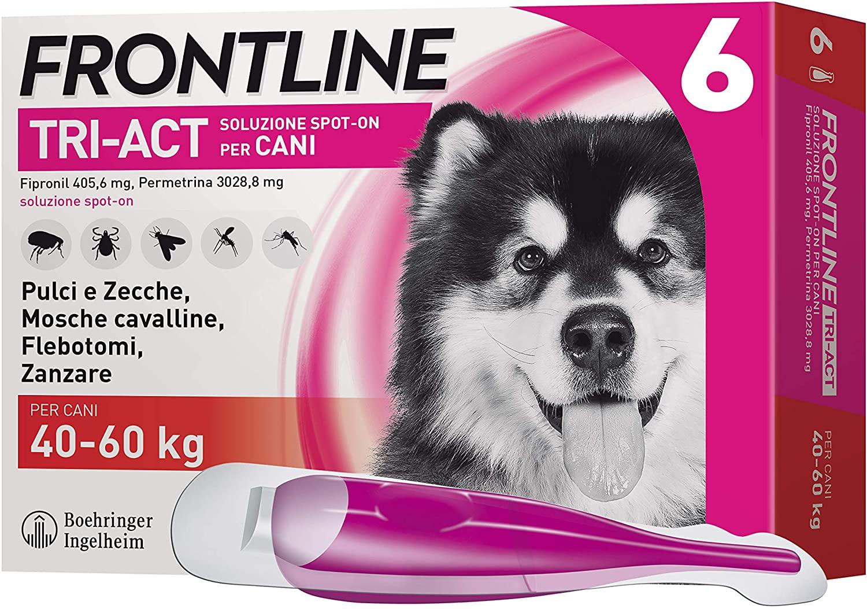 Frontline | TriAct Spot On Cani| Protezione da pulci, zecche, mosche cavalline pappataci | 6 Pipette | Cane XL (40 - 60 Kg)